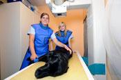 Roentgen_Tierarztpraxis_Fuchs_Mannheim